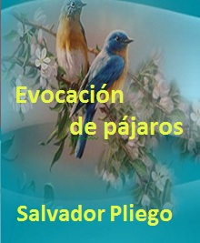 Evocación de pájaros